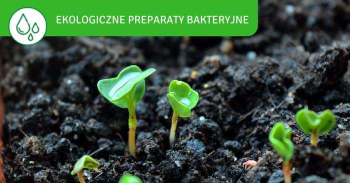 Preparaty bakteryjne - biopreparaty - BactoTech