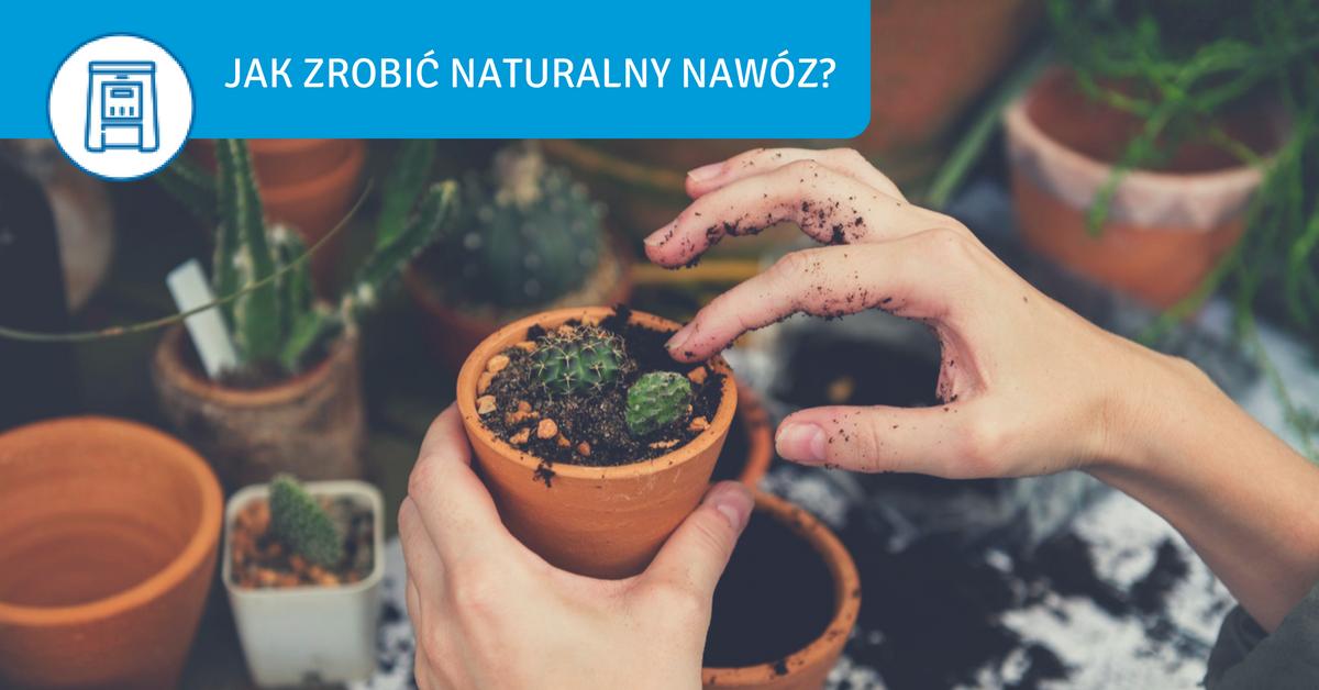 naturalny nawóz do warzyw jak zrobić ekologiczny nawóz do ogrodu