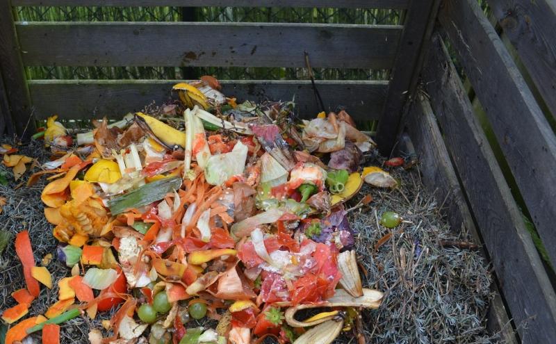 Jak zrobić kompostownik: samodzielnie przygotowany kompostownik to idealne miejsce na resztki owoców i warzyw. Im bardziej je rozdrobnisz, tym szybciej uzyskasz nawóz.