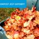 Czy kompost jest gotowy? Sprawdź to prosto i skutecznie!