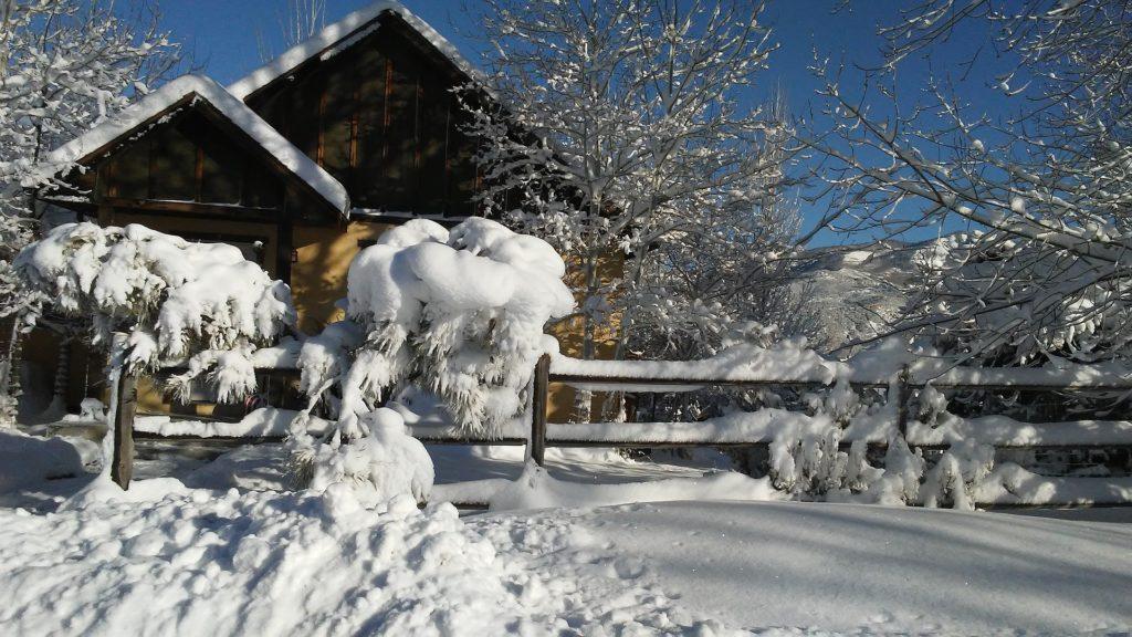 jak-zima-dbac-o-ogrod-snieg-na-trawniku