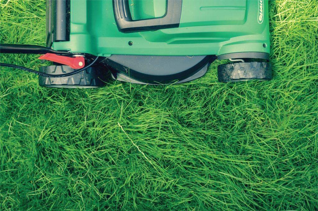 jak-dbac-o-trawnik-w-marcu-koszenie